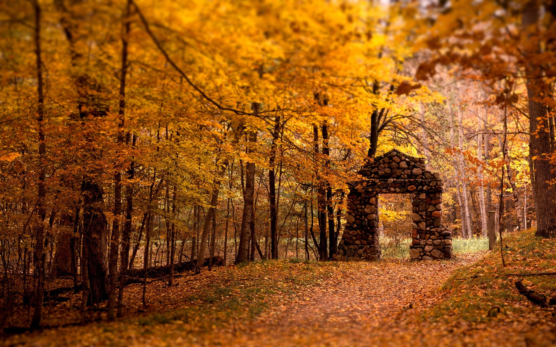 25 stunning fall wallpapers