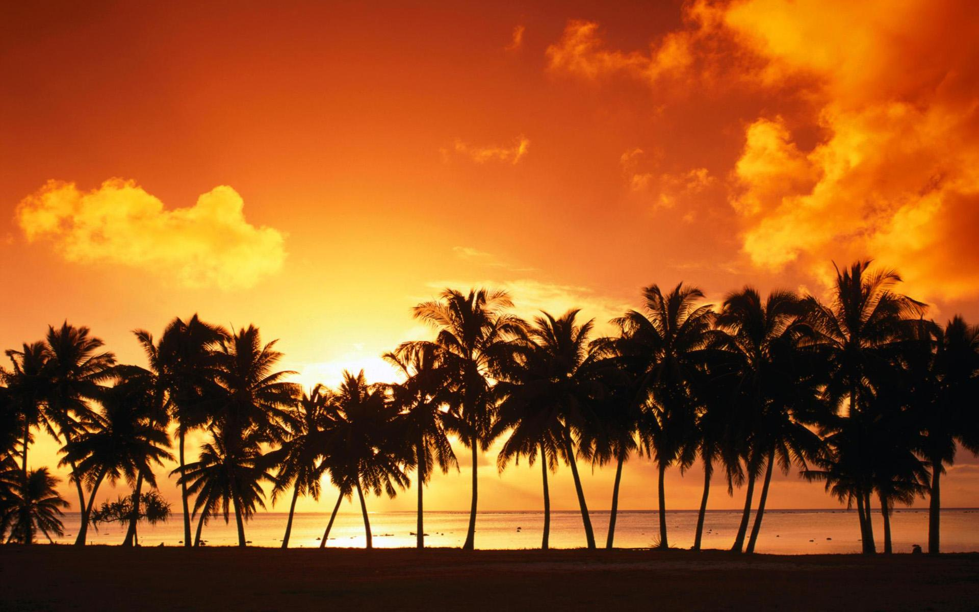 Tropical beach background 14 for In and out pictures
