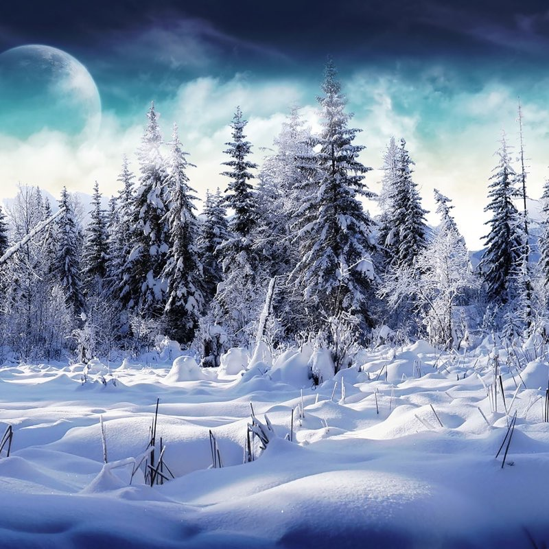 Winter iPad Wallpaper 20