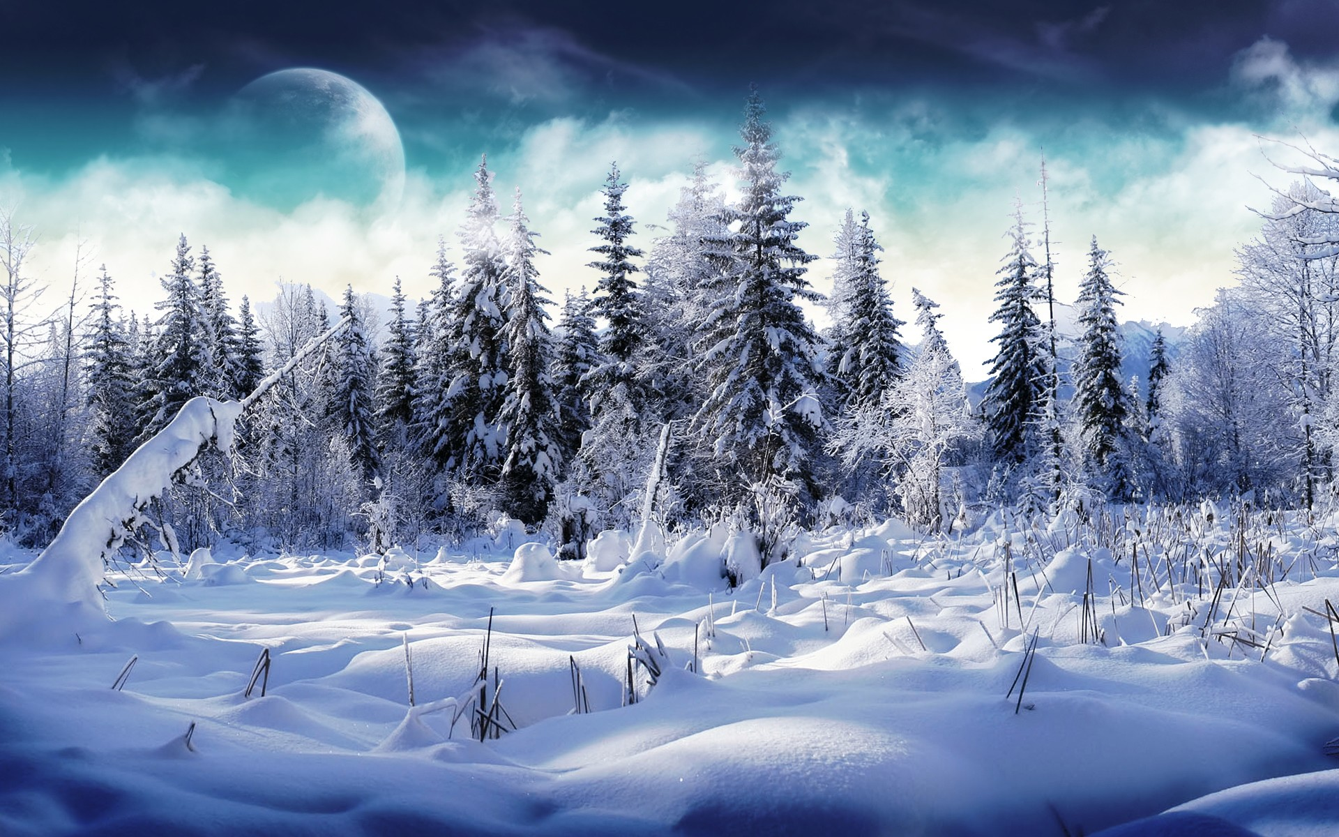 winter wallpaper with a - photo #10