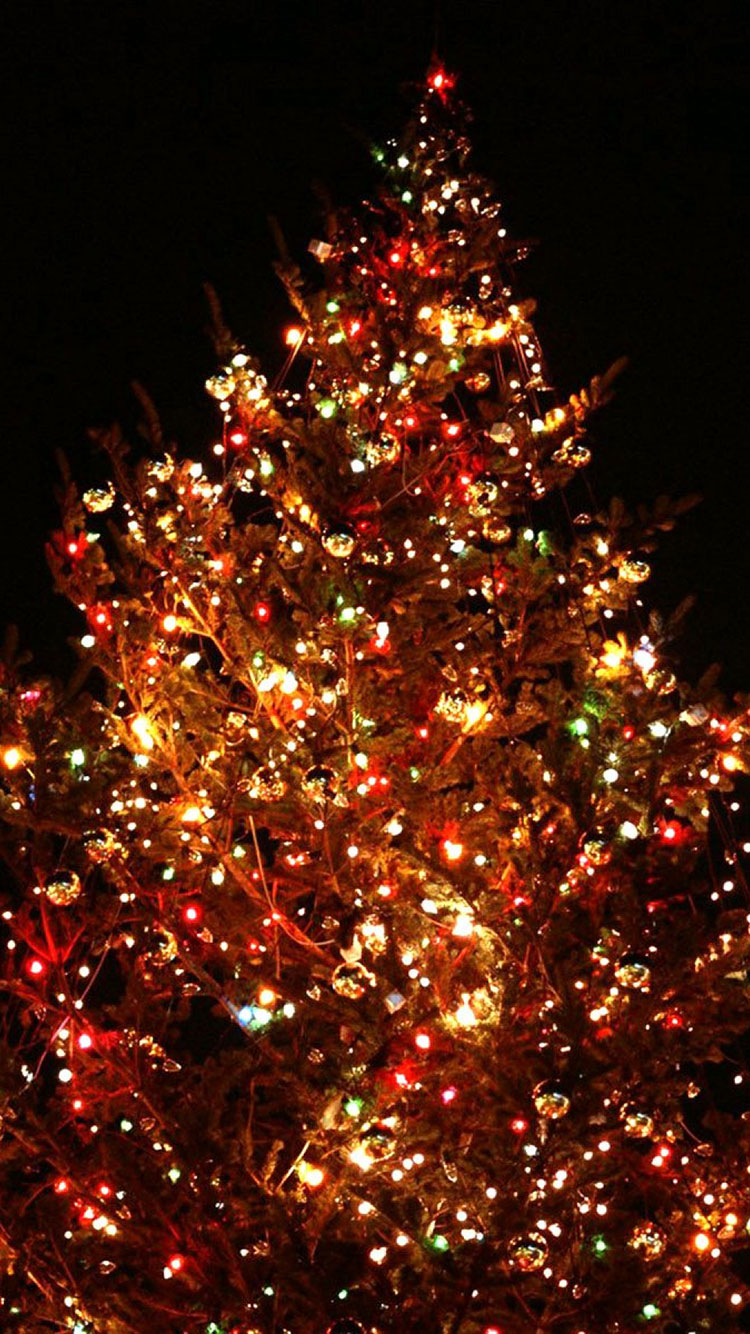 Christmas iPhone Wallpaper 5
