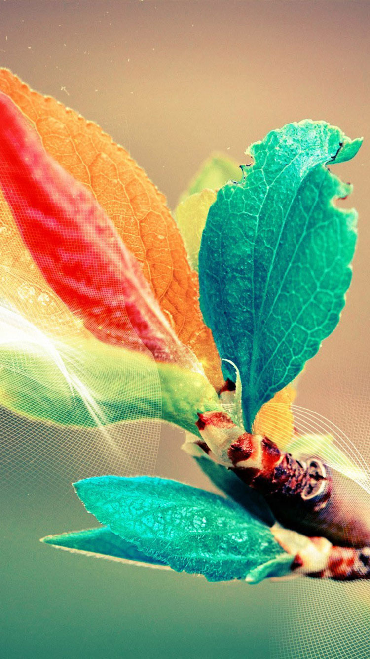 Colorful iPhone Background 16