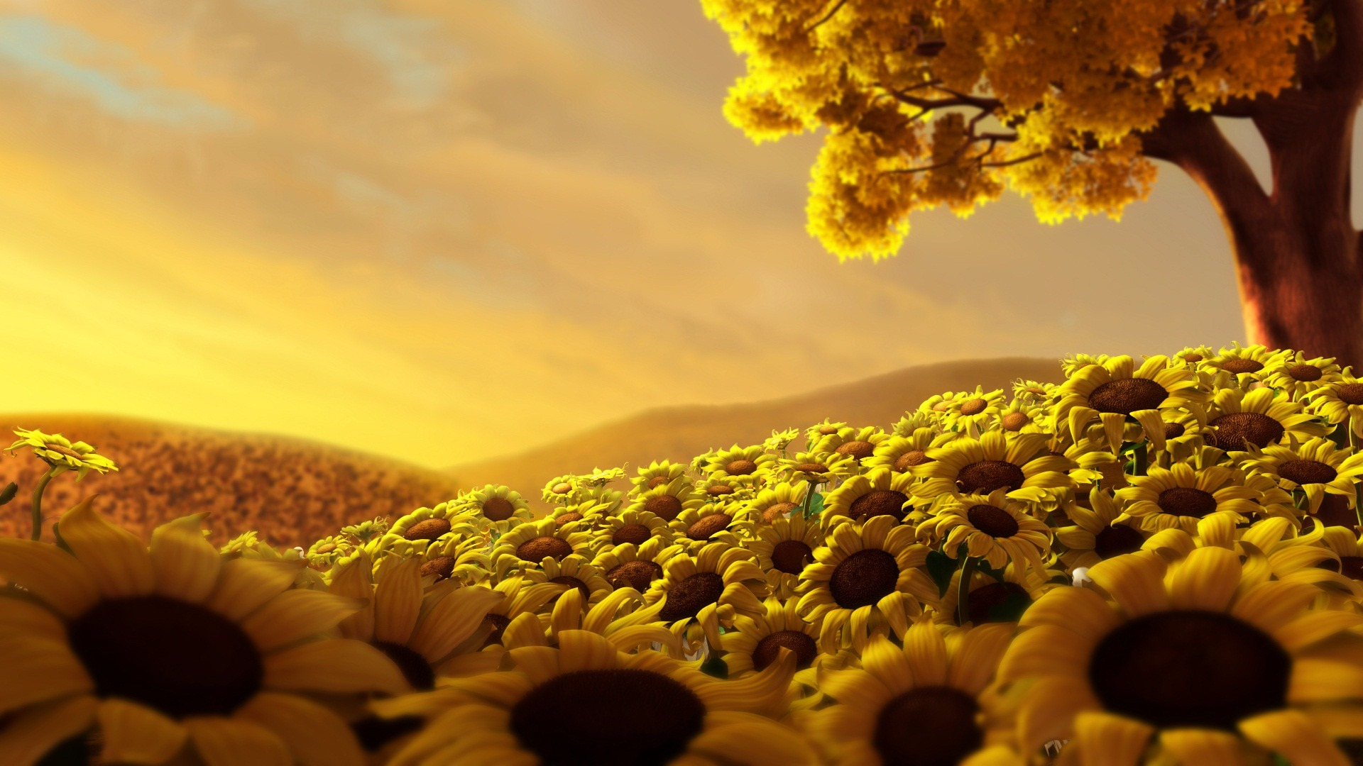 Wall Papers Flowers Wallpaper