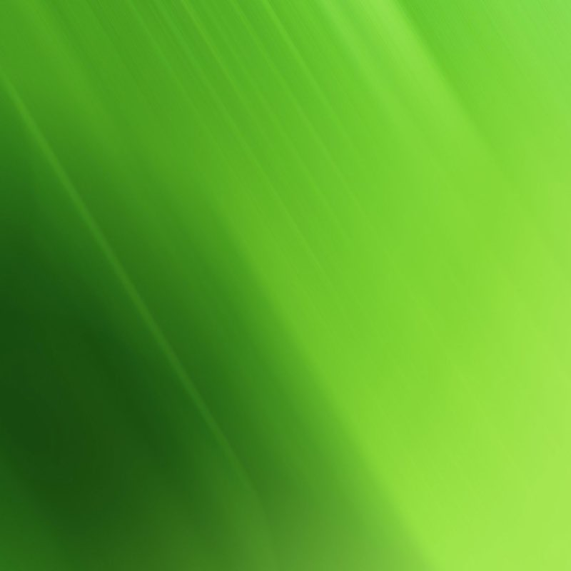 Green iPad Wallpaper 13