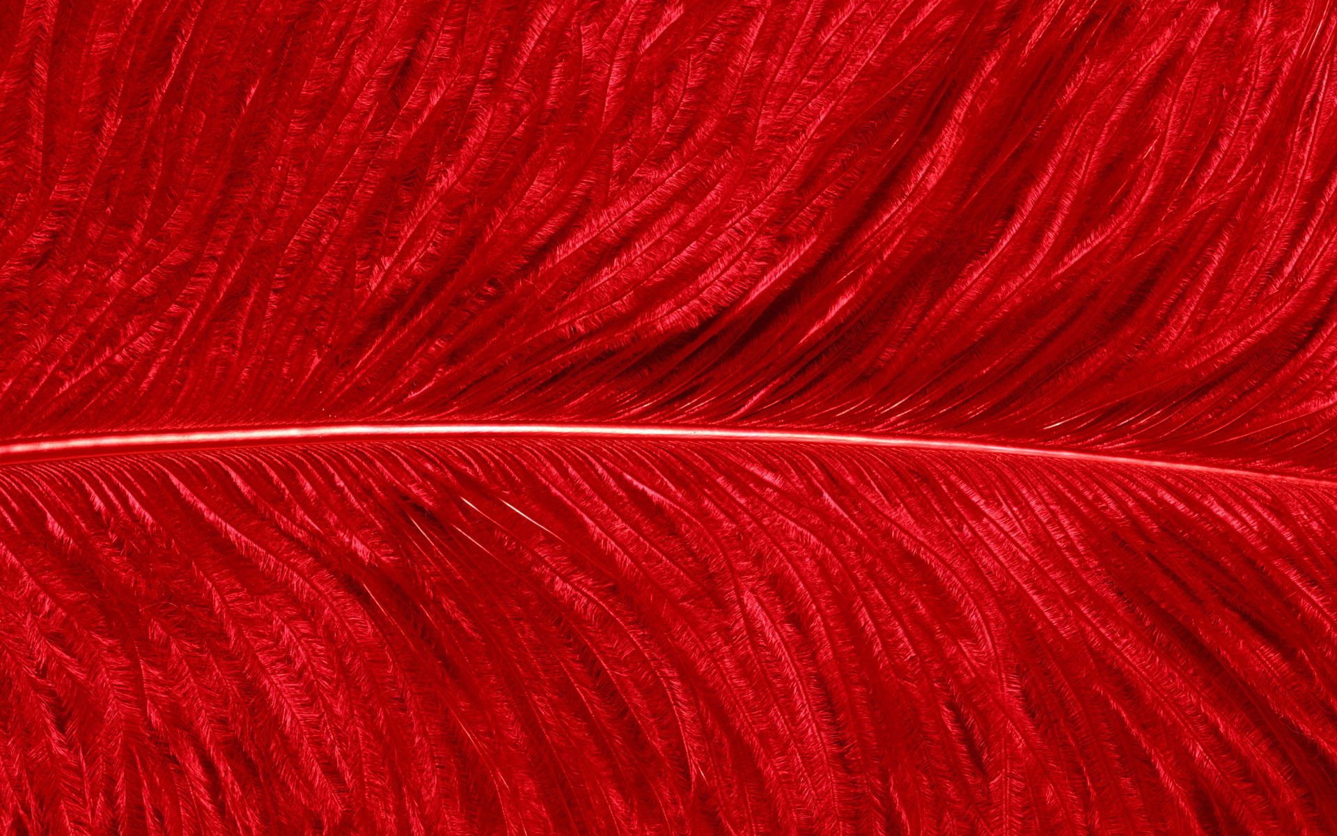 Red Wallpaper 10