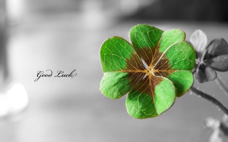 St. Patty's Day Background 4