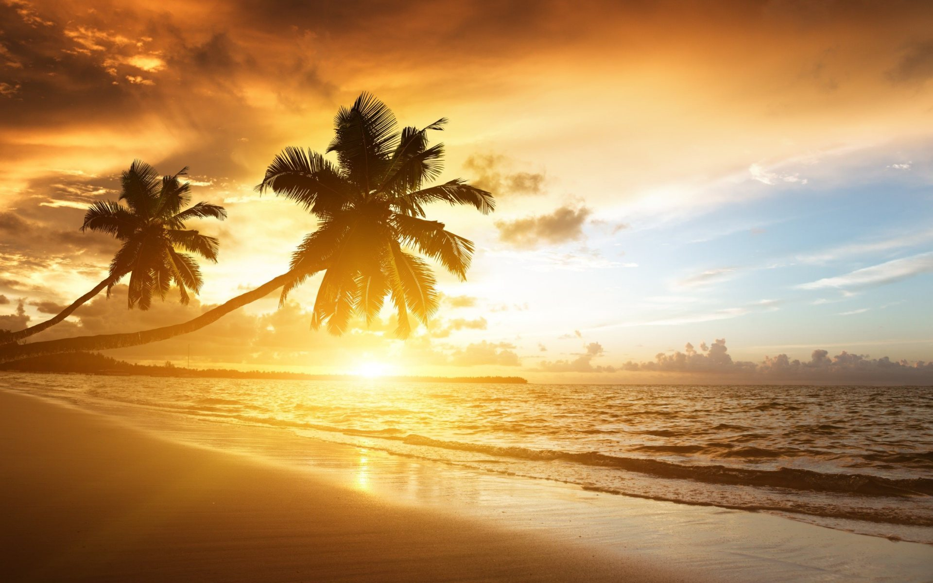Background image beach - Tropical Beach Background 21