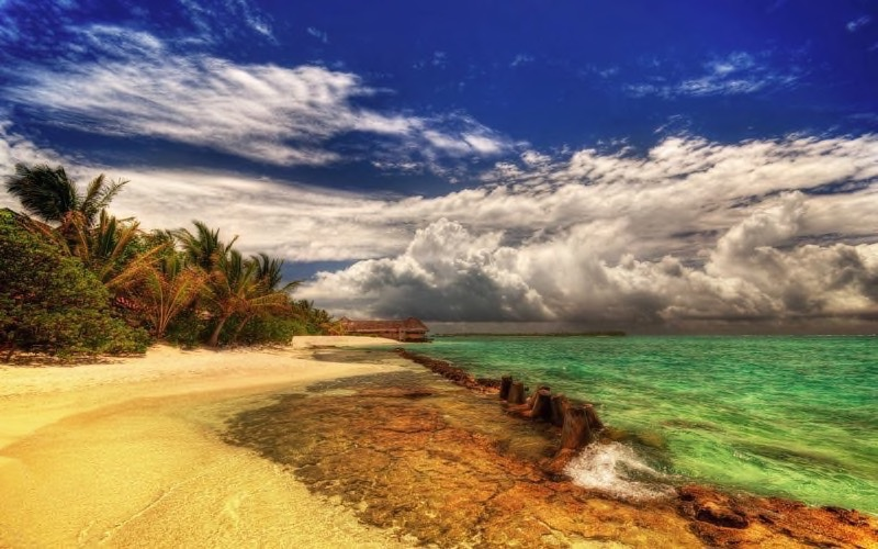 Tropical Beach Background 18