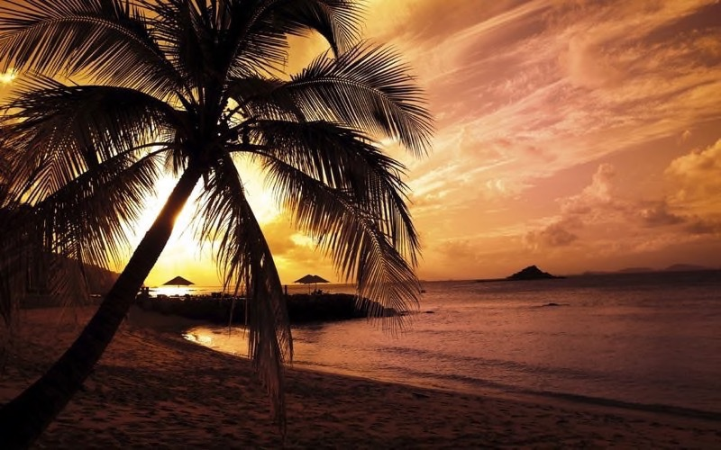Tropical Beach Background 23
