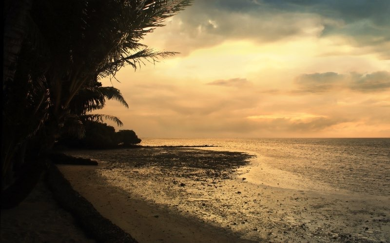 Tropical Beach Background 30