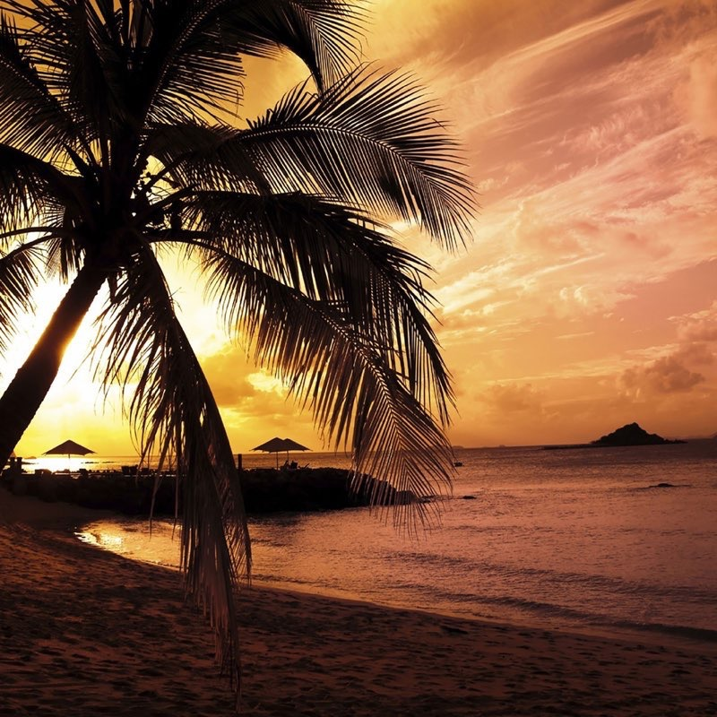 Tropical Beach iPad Wallpaper 23