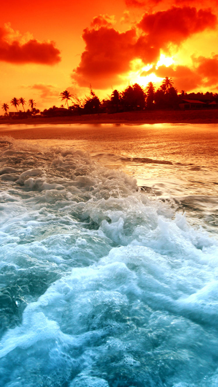 Tropical Beach iPhone Wallpaper 1
