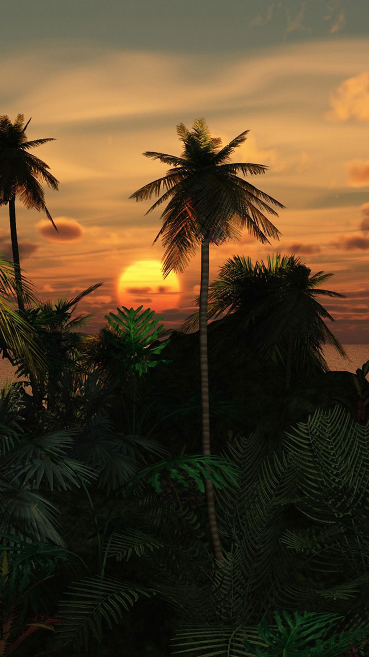 tropical wallpapers for ipad