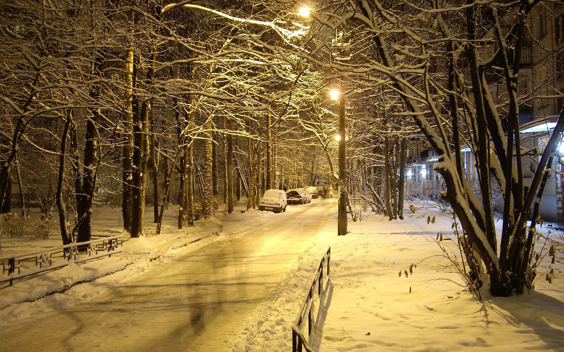 Free Wallpaper Winter Backgrounds Amazing Winter Wallpapers